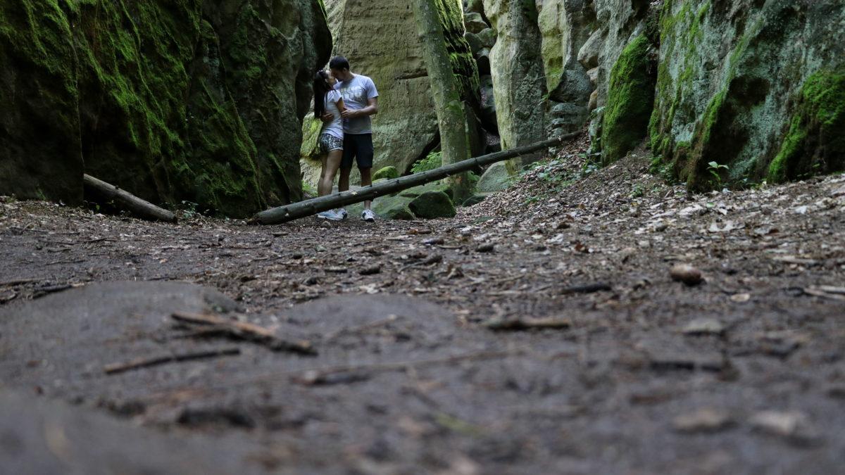 Ve stínu Prachovských skal