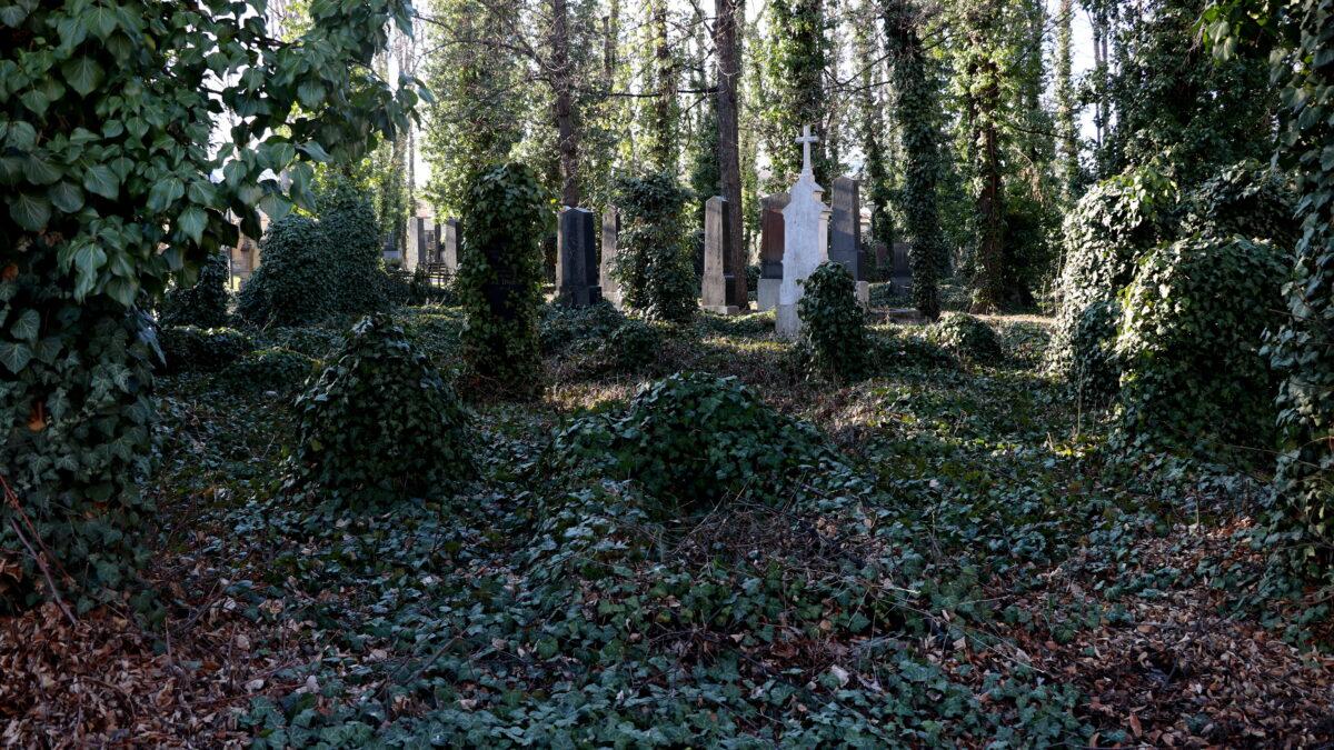 Německý evangelický hřbitov v pražských Strašnicích